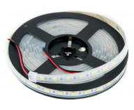 Ribbon Flex 5050 LED. 6000K. 24V. IP65